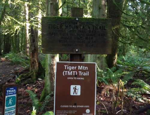 Tiger Mountain Trail