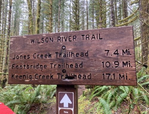 Wilson River Trail