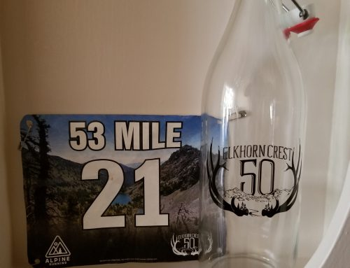 Elkhorn Crest 53 Mile Race Report