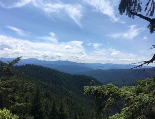 Hardesty Mountain – Sawtooth Ridge Loop