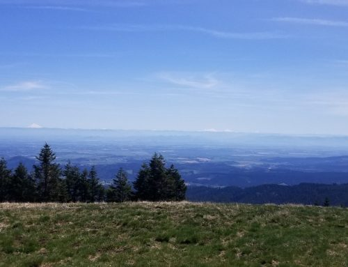 Marys Peak