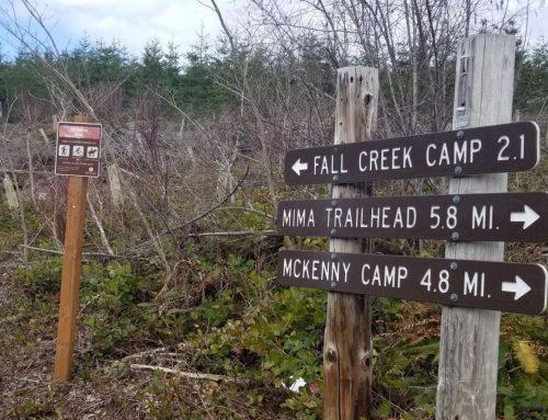 Margeret McKenny-Mima Falls Loop