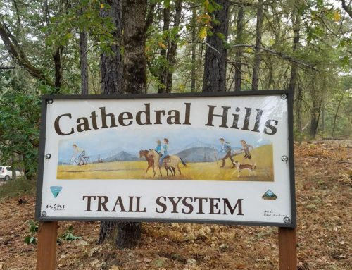 Cathedral Hills