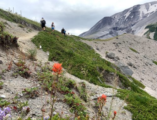 Mt. St. Helens Circumnavigation (Loowit Trail)