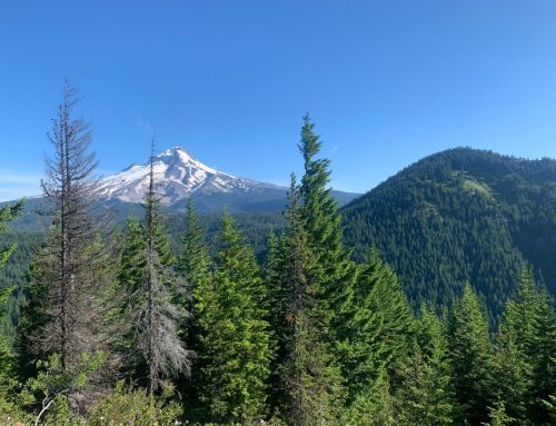 Barlow Pass – Frog Lake Section of the PCT
